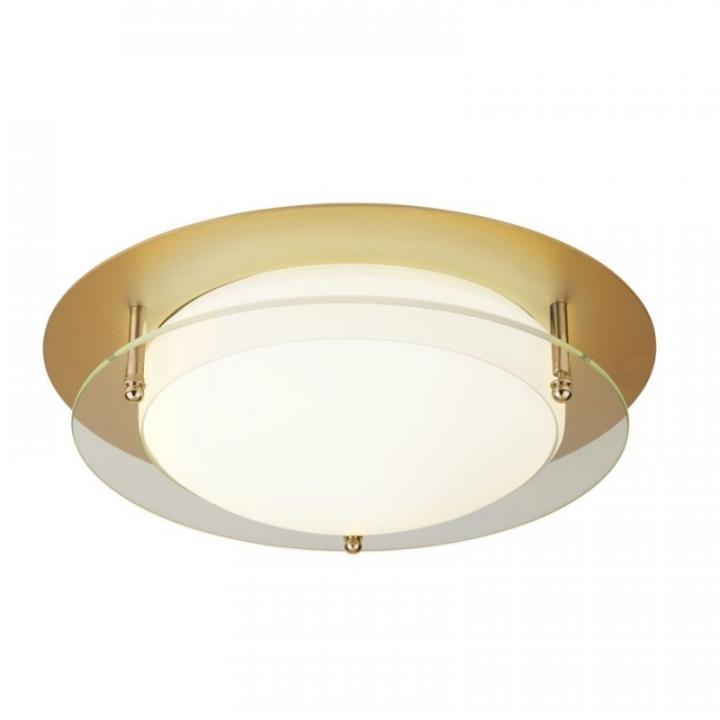 Потолочный светильник Searchlight BATHROOM FLUSH 6830-30GO