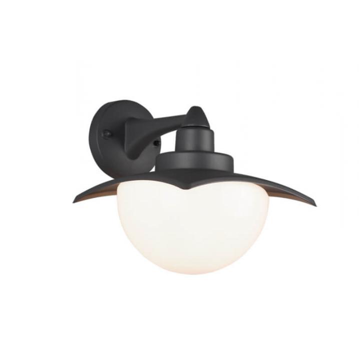 Настінний вуличний світильник TRIO DONEZ 204960142