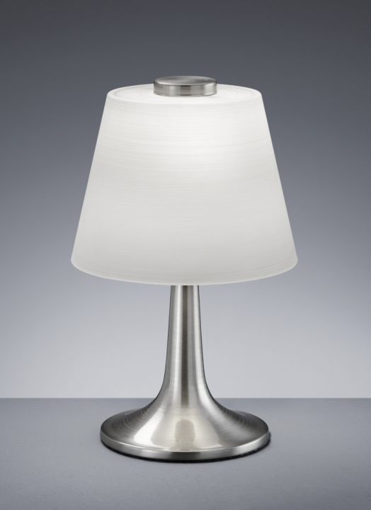Настільна лампа TRIO MONTI 529310107