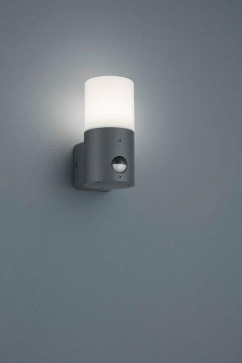 Настінний вуличний світильник TRIO HOOSIC 222260142