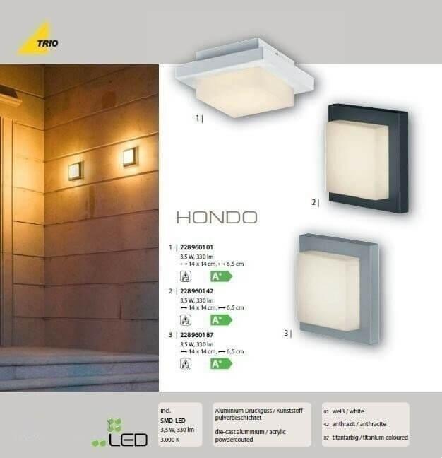 Настінний вуличний світильник TRIO HONDO 228960187