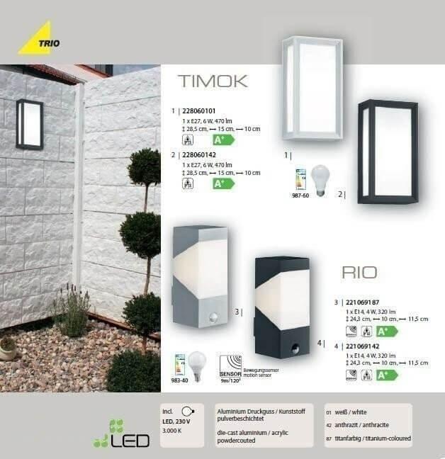 Настінний вуличний світильник TRIO TIMOK 228060142
