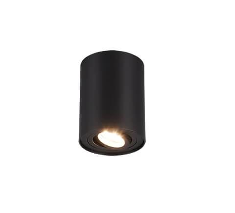 Точечный светильник TRIO BISCUIT 612900132