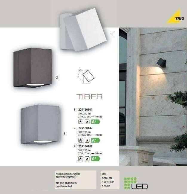 Настінний вуличний світильник TRIO TIBER 229160101